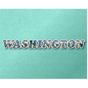 Washington Panoramic Text VT