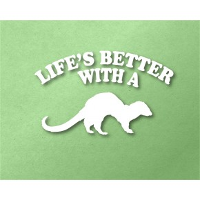 Life's Better With a Ferret...