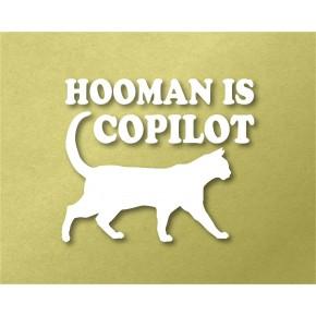 Hooman is CoPilot Pet Vinyl...
